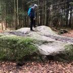 Buresø og de 3 små skove omkring