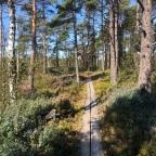 Skåneledens Bjärehalvø